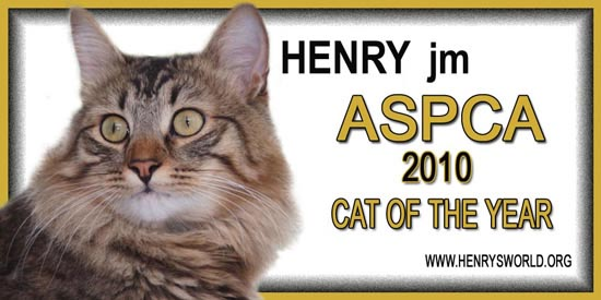 ASPCA Cat of the Year 2010